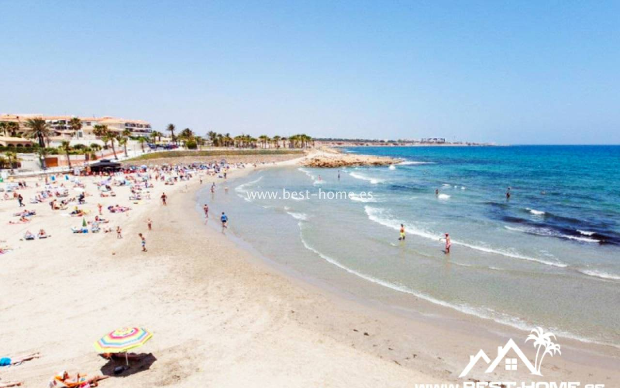 Pierwotny - Apartament - Playa Flamenca